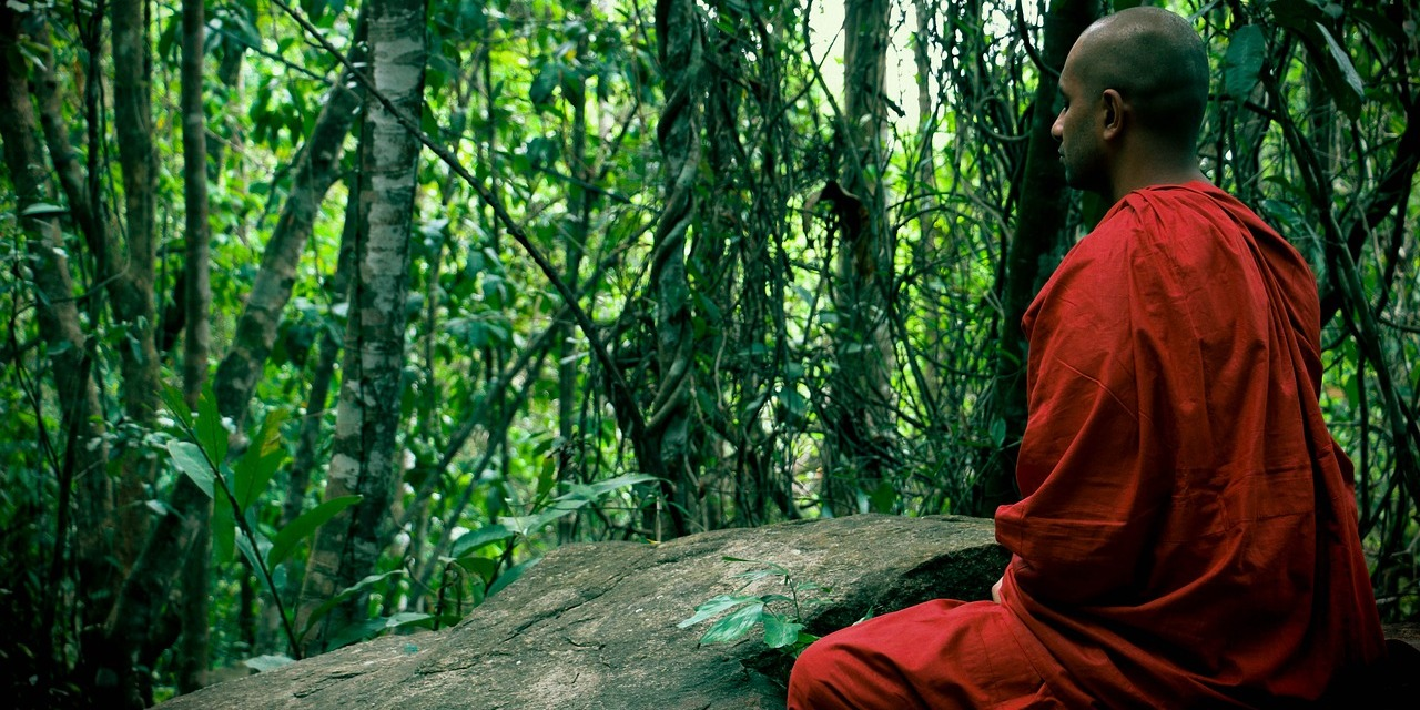 Thai Forest Tradition Vipassana Retreats in Thailand