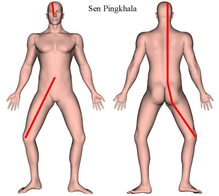 Linha Sen Pingkhala | Massagem Tailandesa