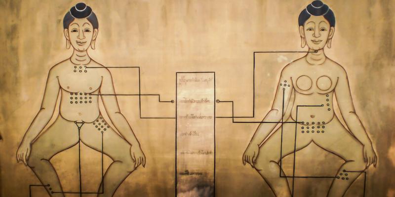 Sen Sib Theory | Energy Lines