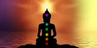 chakras-spine-enlightenment