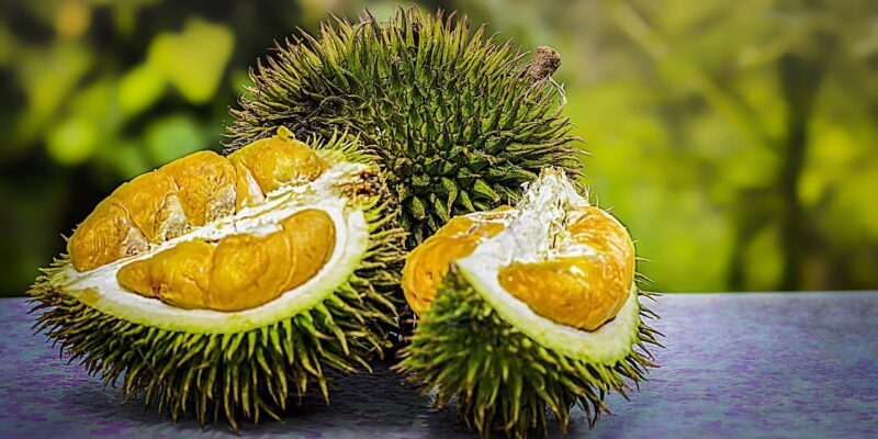 Durian Fruits and Sex Drive