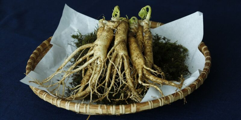 Ginseng Root for Low Libido and Erectile Dysfunctions | Aphrodisiac