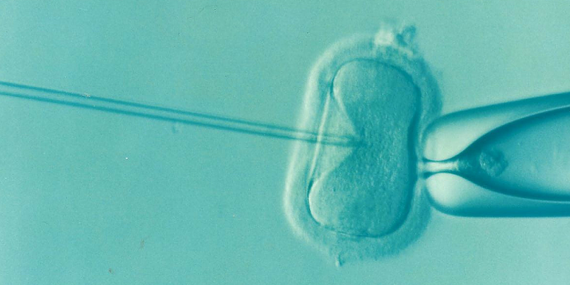 What are Assisted Reproductive Technologies? | ART